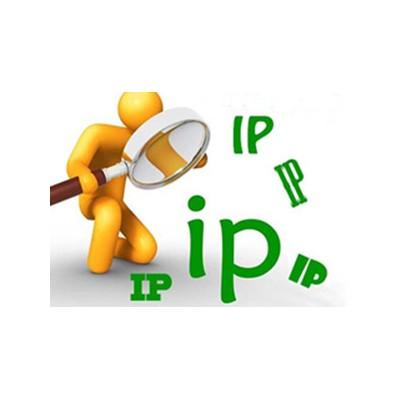 多ip站群服务器:网站优化用多ip站群服务器的优势分析